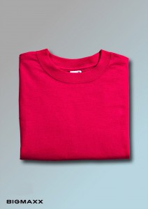 Anvil T-Shirt in rot